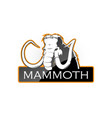 mammoth vector image vector image
