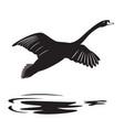 swan 2 vector image