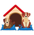 two cute dogs by the doghouse vector image