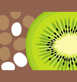 abstract kiwi fruit design in flat cut out style vector image vector image