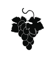 Grapes bunch icon simple style vector image