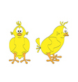 isolated chick - two views vector image vector image