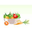 vegetable salad vector image