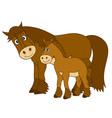 Cartoon Horses vector image vector image