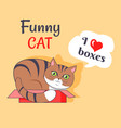 Funny cat i love boxes poster vector image