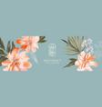 peony orange bloom floral greeting card vector image