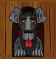 the dog in the booth the wooden box and a black vector image