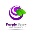 Blueberry purple colorful logo berry icon vector image
