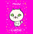 Cutie cat for t-shirt or other usesin vector image vector image