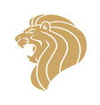 gold lion head logo vector image