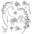 line art set botanical elements vector image vector image