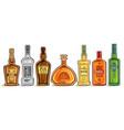 set alcohol bottles vector image
