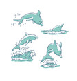 set dolphins jumping dive and swim vector image