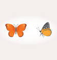 set of colorful butterfly design vector image