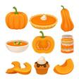 tasty pumpkin dishes set fresh ripe pumpkin and vector image vector image