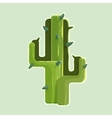 The green cactus in a desert isolated on white vector image