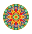 Colour Flower Mandala Ethnic decorative vector image