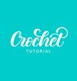 crochet hand lettering vector image vector image