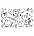 doodle elements sketch decoration design vector image vector image