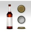 Glass Brown Bottle Dark Beer with label and Caps vector image