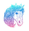 hand drawn of cute unicorn vector image vector image