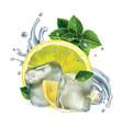 lemon slices mint leaves and water splash vector image vector image