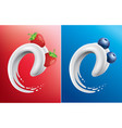 milk tongue with fresh strawberry and blueberry vector image