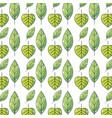 natural leaf and tropical biology background vector image vector image