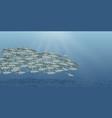 sea landscape school vector image