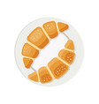 two croissants on a plate vector image vector image