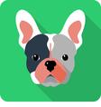 dog French bulldog icon flat design vector image vector image
