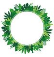 leaves and plants round frame vector image