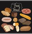 rye bread ciabatta wheat bread whole grain vector image
