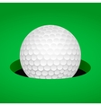 Golf ball in cup vector image