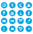 argentina set icon blue vector image vector image