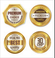 golden metal badges vector image vector image