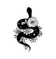 hand drawn boho snake doodle sketch witchcraft vector image vector image