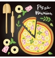 Hawaiian Pizza with vector image