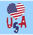 love usa america vintage national flag in vector image