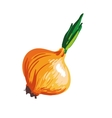Onion cartoon vegetable drawing vector image vector image