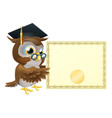 owl diploma certificate background vector image vector image