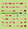 sketch colored meat elements collection vector image vector image