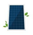 solar panel and abstract green laves vector image