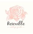 rose label sketch art vector image