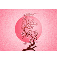 cherry blossom spring nature scene vector image