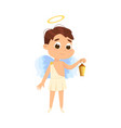 cute baangel with lantern angelic boy with vector image