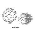 artichoke sketch style hand drawn vector image vector image