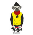 cool dog in human clothes vector image vector image