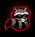 raccoon mascot logo vector image
