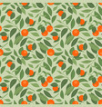 seamless pattern with mandarins and leaves on vector image vector image